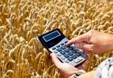 Земельный налог — как рассчитать и составить декларацию