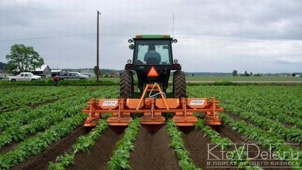 Трактор возделывает поле