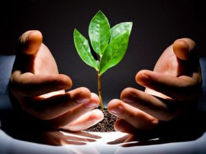 как начать бизнес без стартового капитала