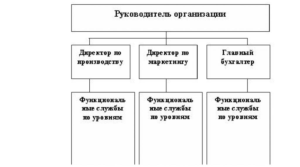 формы организации бизнеса план