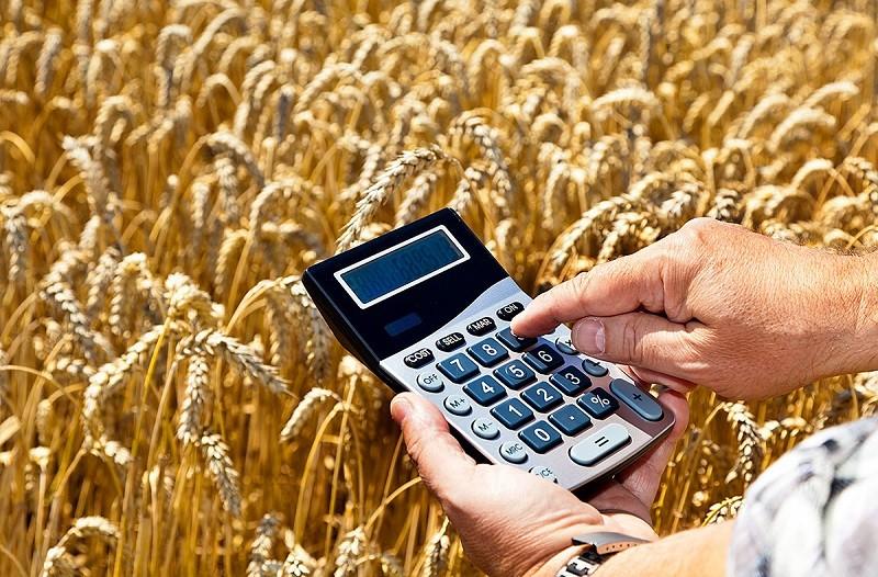 Как заполнить декларацию по земельному налогу: практический пример